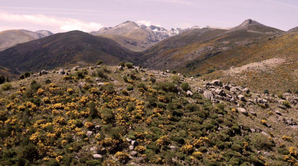 Fotografia del entorno de Navacepedilla de Corneja