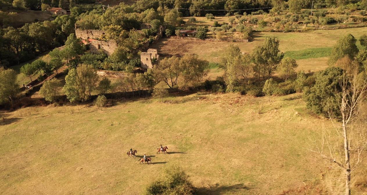 Rutas a caballo en Ribera del Corneja