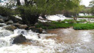 Río Corneja - Ribera del Corneja